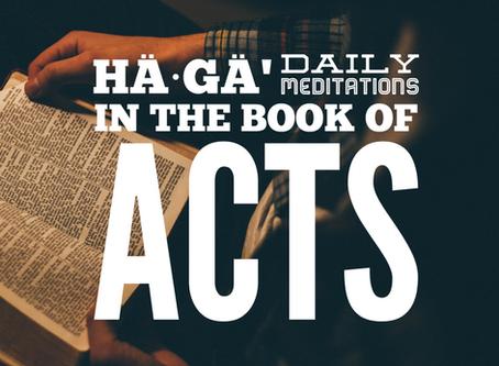 ACTS 1:20 // Répondez s'il vous plaît
