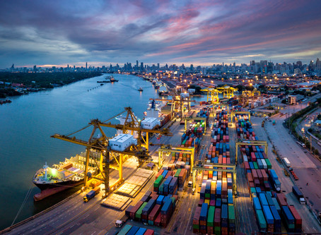 The Future of Global Supply Chain: Specialisation vs Automation