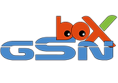 logo GSN BOX COLOR 2.png