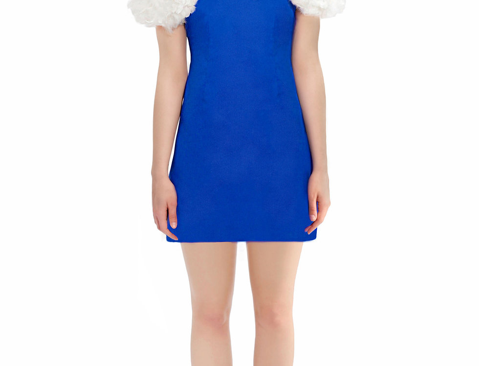 Mini Dress With Feather Sleeves