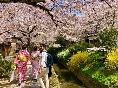 Il miglior mese per andar in Giappone