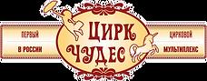 Цирковой_мультиплекс (1).png
