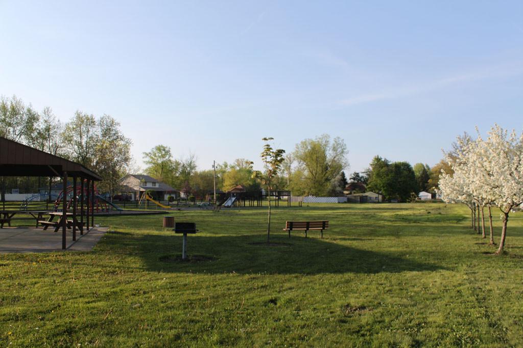 morgandale_field.jpg