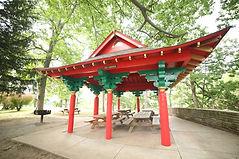 T is Tea Garden.jpg