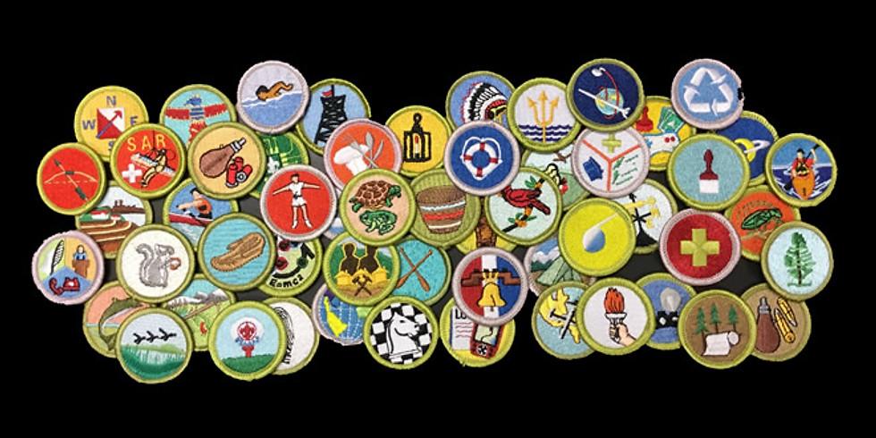 Merit Badge Day