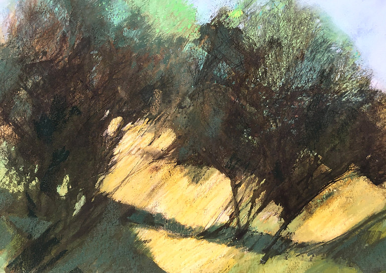 Spring Hawthorns
