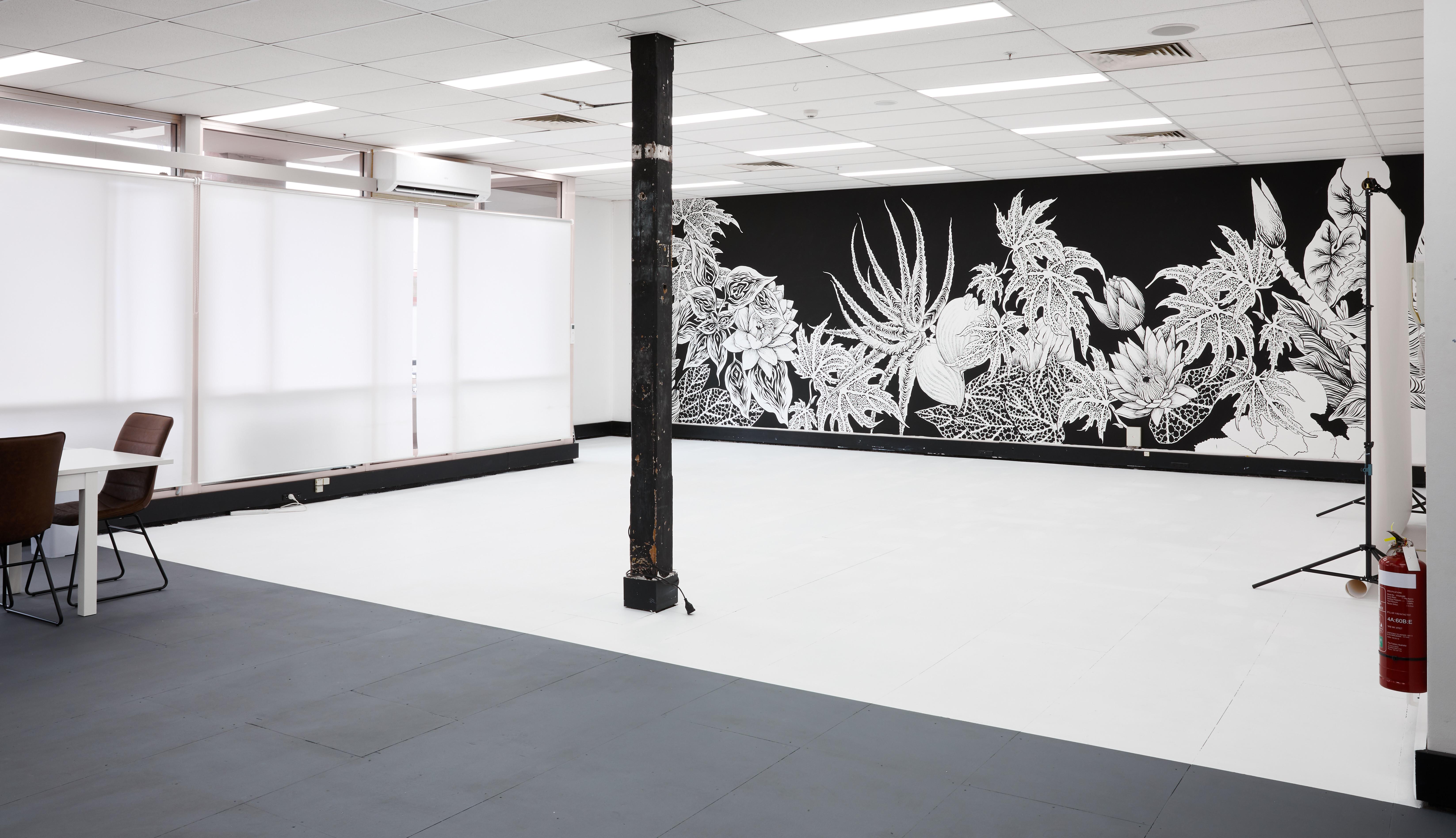 Studio Hire - White