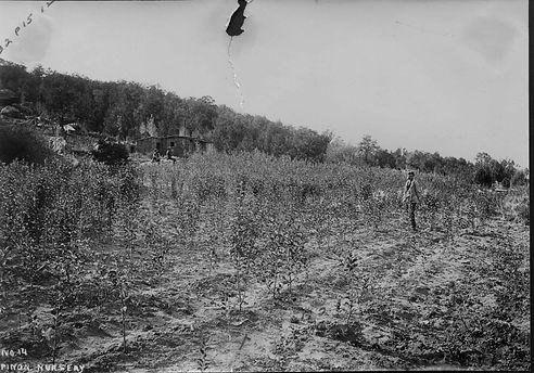 Photo Courtesy of Rimrocker Historical Society