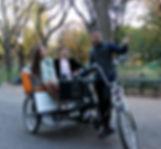 private central park tour