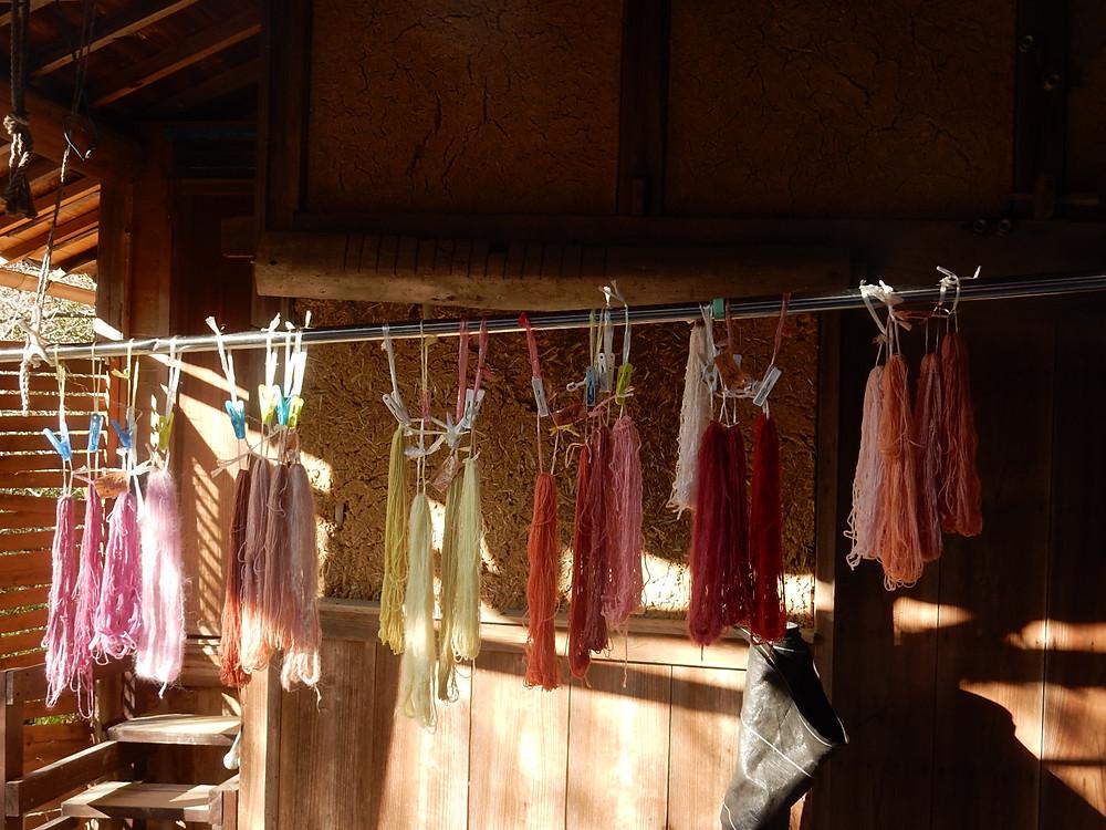 高野槙、ミモザ、枇杷、西洋茜、梅の木苔の草木染め