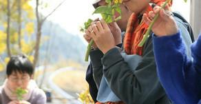 4/28・5/4に【里山リラクゼーション】開催★脳、疲れてませんか?~リハのレポート~