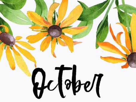 Октябрь в Miratox