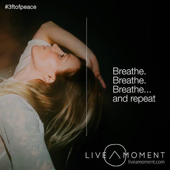 Live a Moment