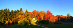 fall colours at the cabin guesthouse