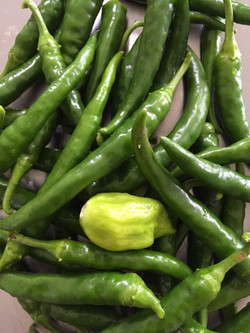 green chilies and scotch bonnet