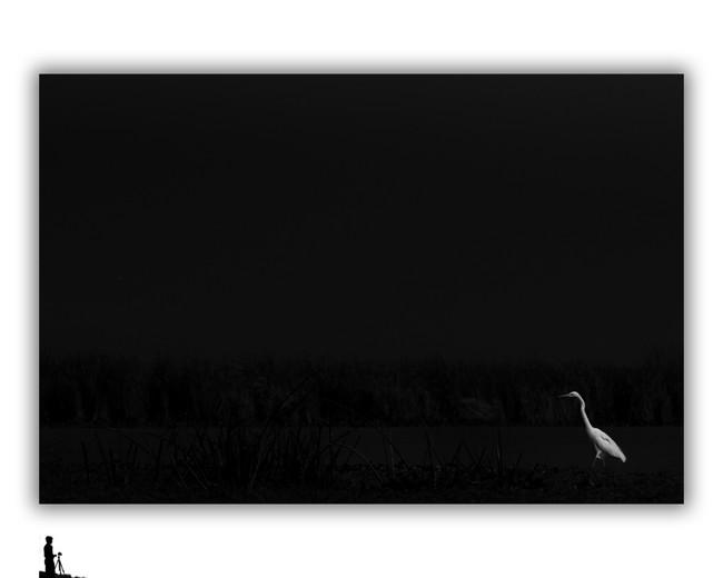 egret minimalistic hosakote