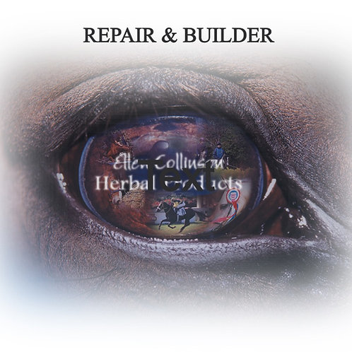 Repair and Builder (formerly Herbal Bute)