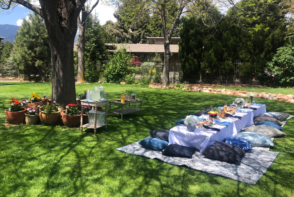 Backyard Picnic for 12 in Kissing Camels