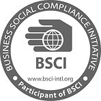 6. BSCI Logo for BSCI Participant.jpg