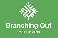 Branching Out Tree Specialists
