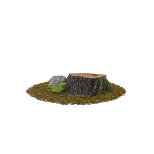 smallStump-Fern-and-Rock.H03.2k.png