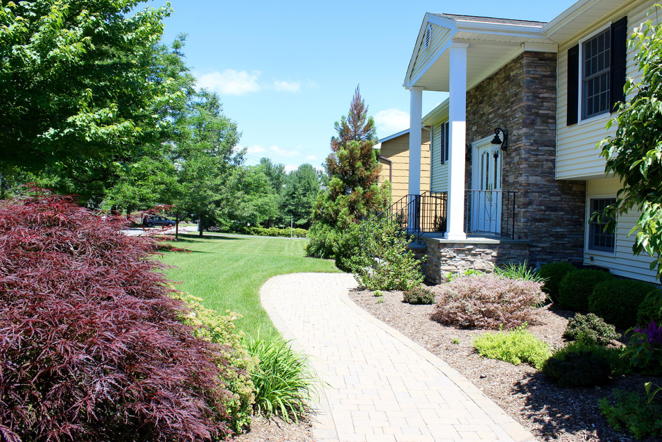 Foundation Paver Walkway with Plantings