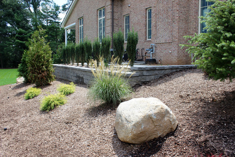 Retaining Wall with Screen Plantings
