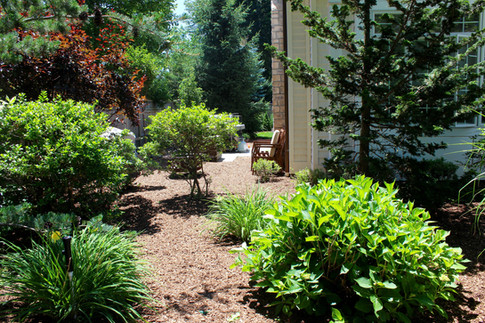 Natural Plantings