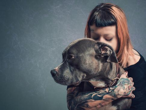 Fotograf Hund Sursee