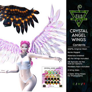 FAS CRYSTAL ANGEL WINGS DISPLAY.jpg