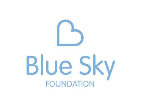 The Blue Sky Foundation - An Exciting Way of Working Together