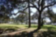 eden rv park - camper spot.jpg