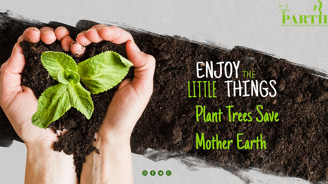 Save Trees Banner