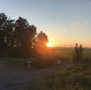 Summer Adventures with Gulf of Maine Institute