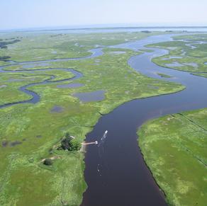 Enhancing Coastal Resiliency via Natural Capital