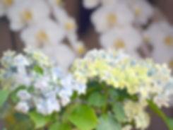 栃木県,真岡市,宇都宮市,aroma,アロマ,リラクゼーション,マッサージ,01