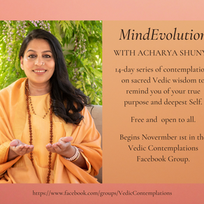 MindEvolution Teachings - November 2019