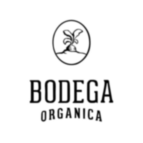 Bodega Orgánica Guadalajara