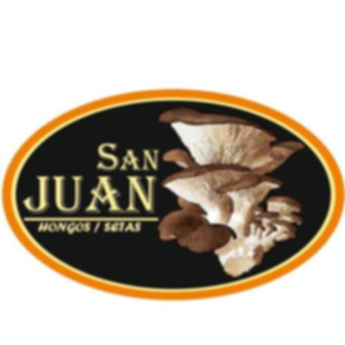 San Juan Hongos/Setas