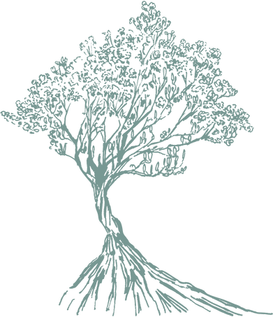 AS Watermark Colored_Tree.png