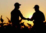 farmers shaking hands.jpg