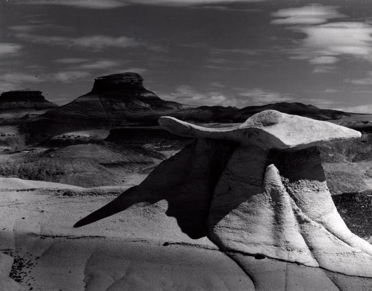 Bisti Badlands - Stone Wings 1