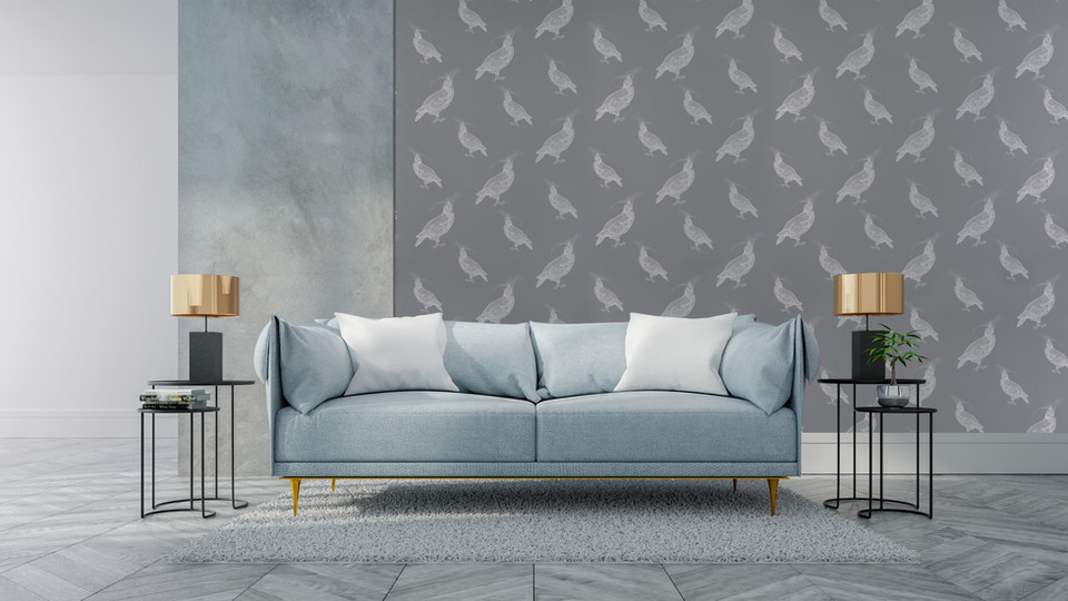 FANCY PIGEON   Silver Frosting on Thunder Grey