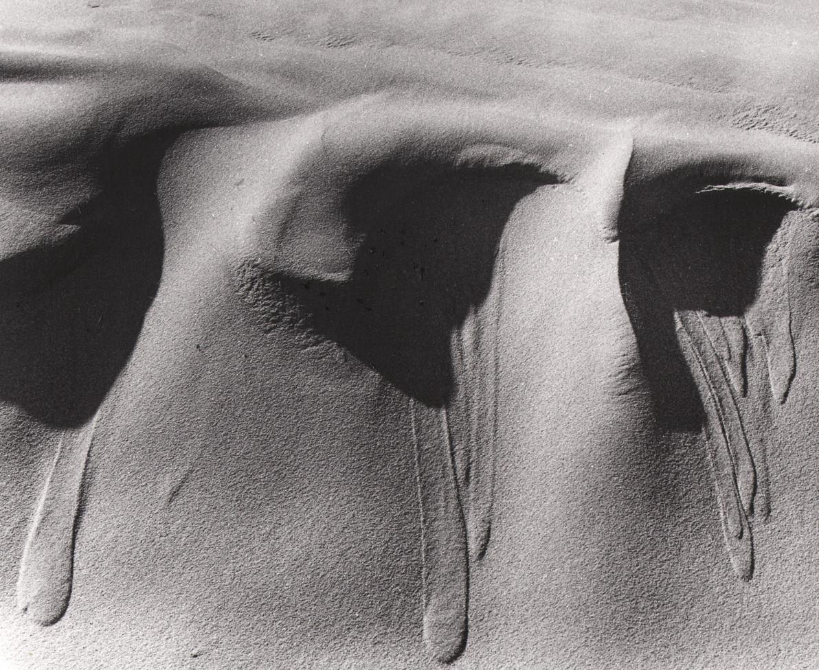 Oceano Dunes 03