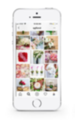 QG-Instagram-Layout-1.jpg