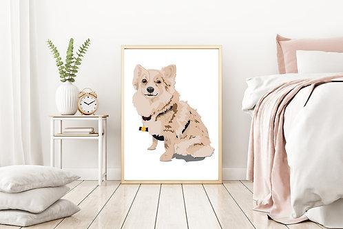 Dolly the Pomeranian