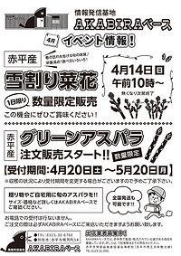 akbrbase1904最終校.jpg