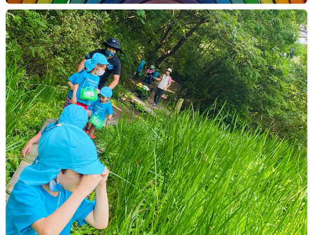 10 Family Friendly Summer Locations in Aichi, Mie, and Gifu.