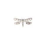 dragonfly-1525836_1920.png