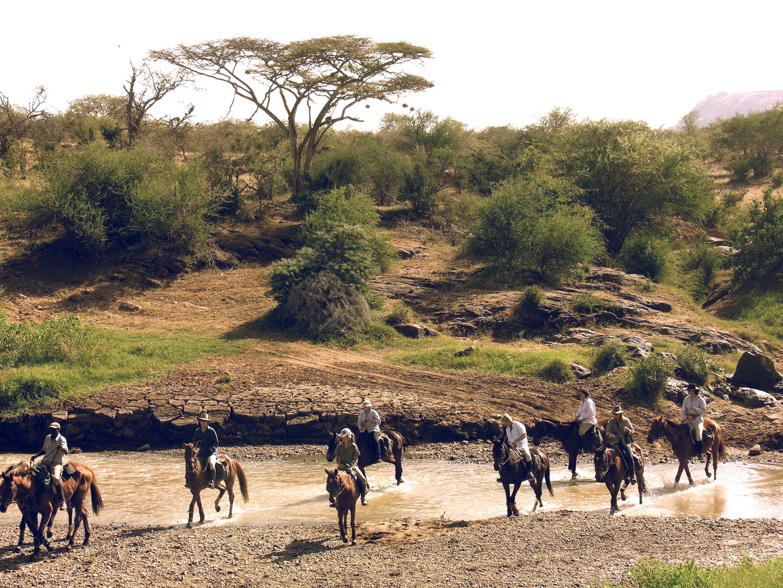 Riding Safari Augusta 2010 133_edited.jp